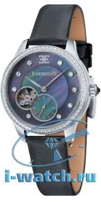 Earnshaw ES-8029-01